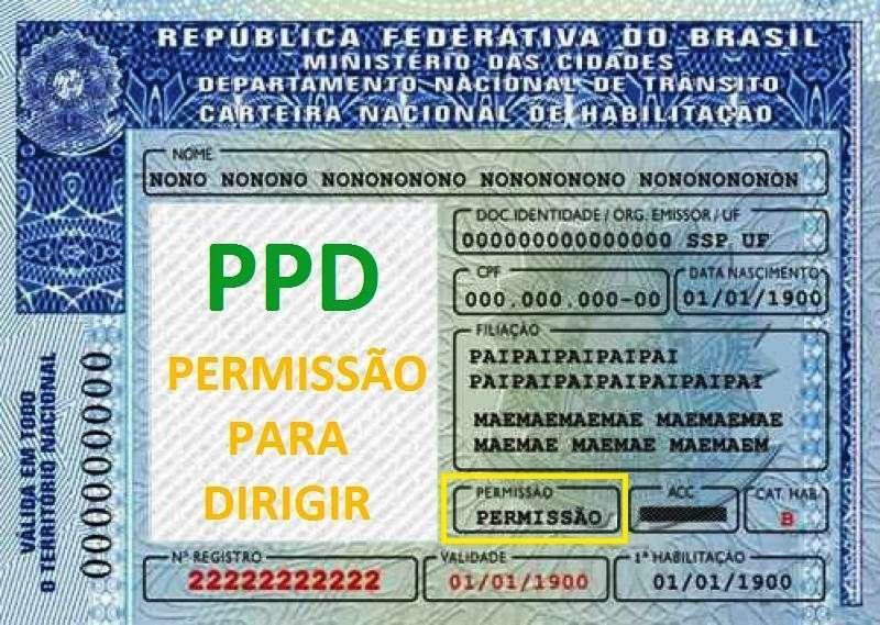 CNH provisória permissão para dirigir